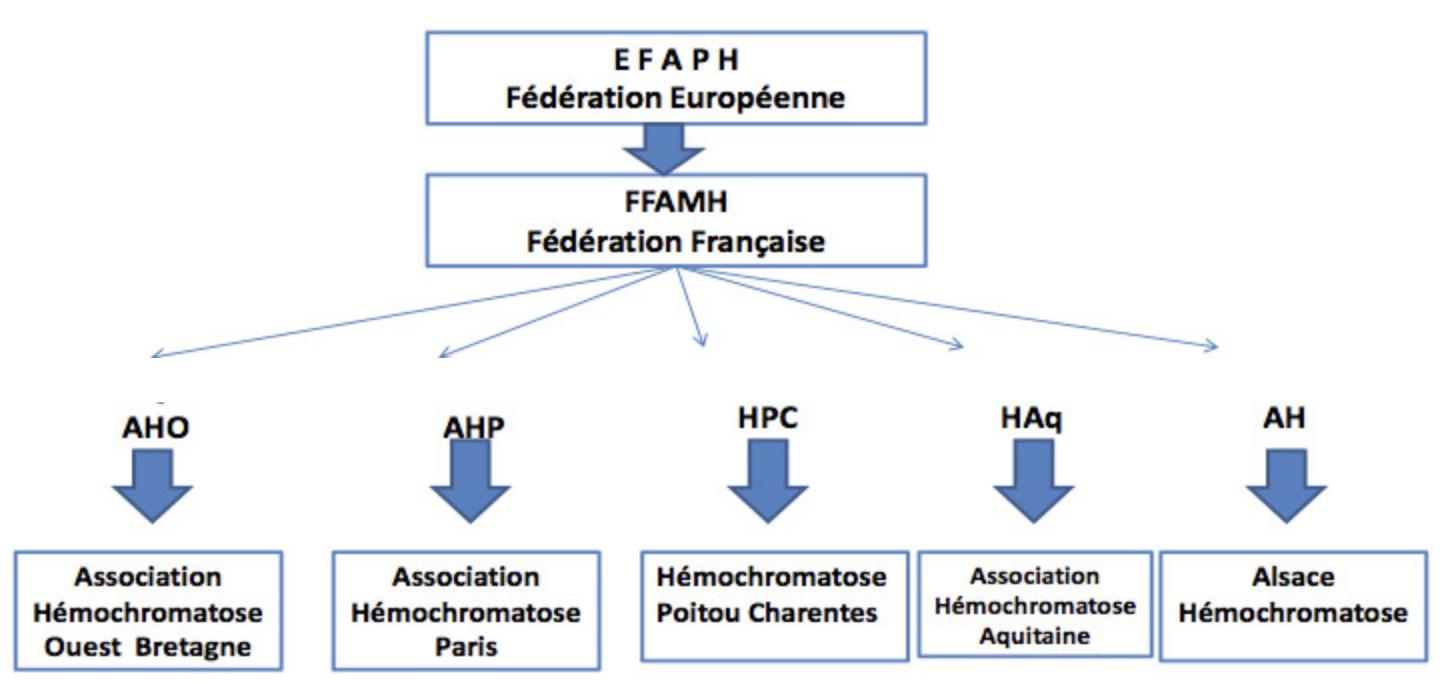 Une structure fédérative